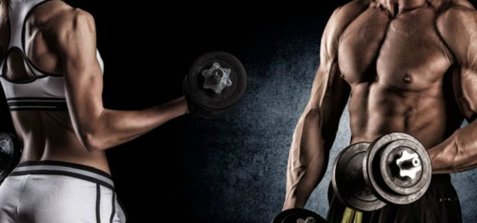 Is muscle memory real?
